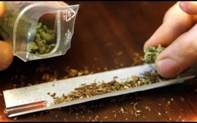 ما هو الفودو – اخطر انواع المخدرات ؟ وما تأثيره على صحة الفرد؟