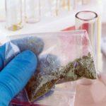 مخدر الجوكر أو الحشيش الصناعي هل هو بديل الحشيش الآمن حقًا؟