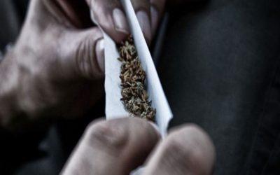 أضرار الماريجوانا وتأثيرها السلبي علي الجسم